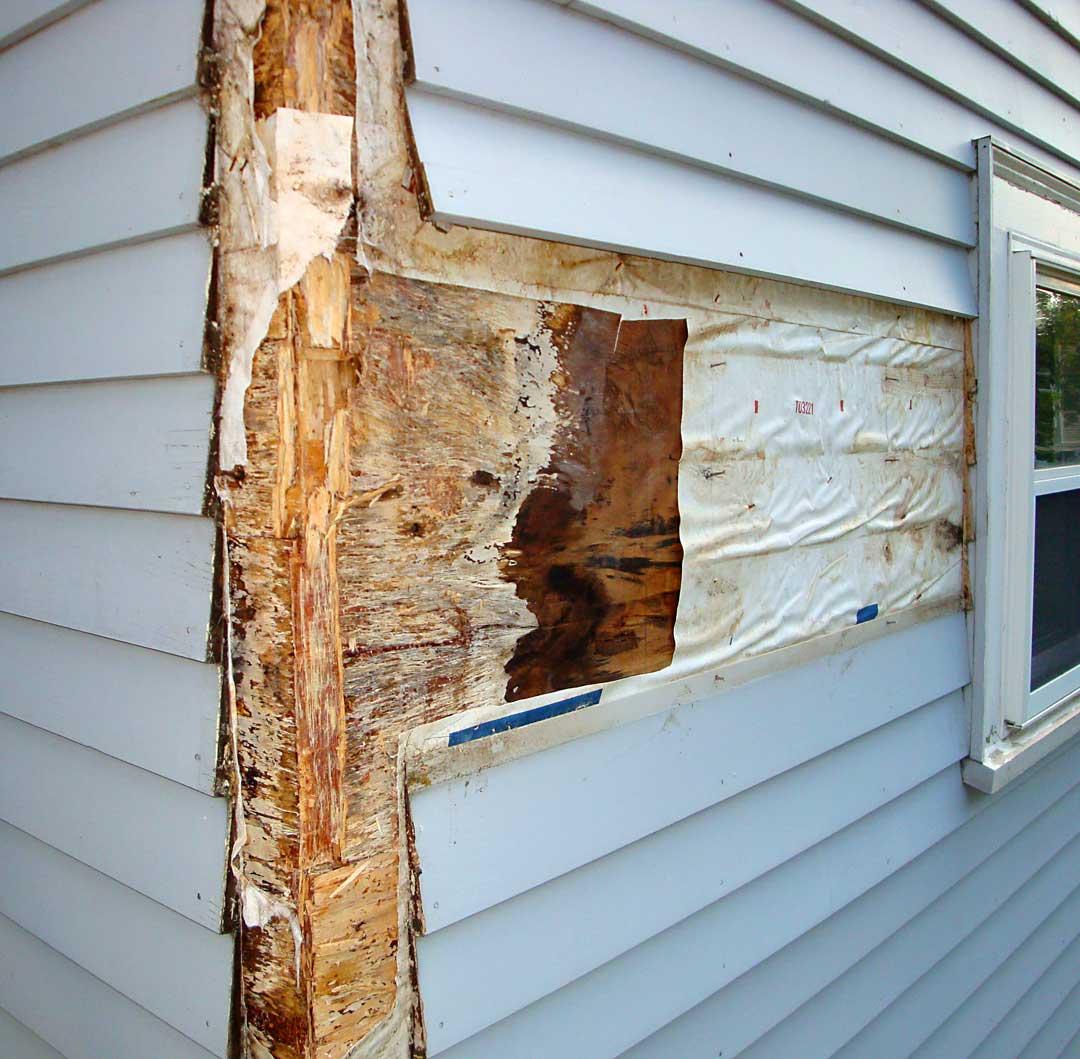 Rotting-plywood-sheathing