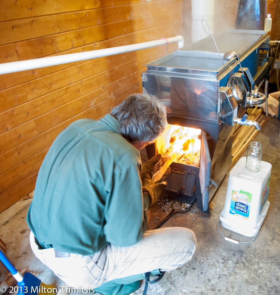 Paul Koval adding firewood to boil maple sap