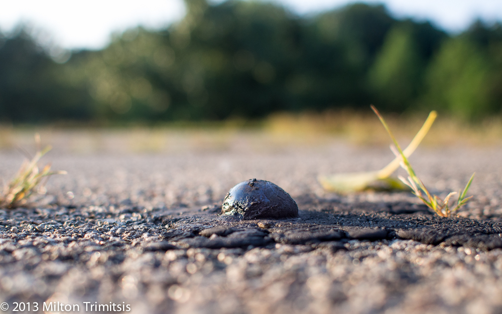tar bubble on hot road