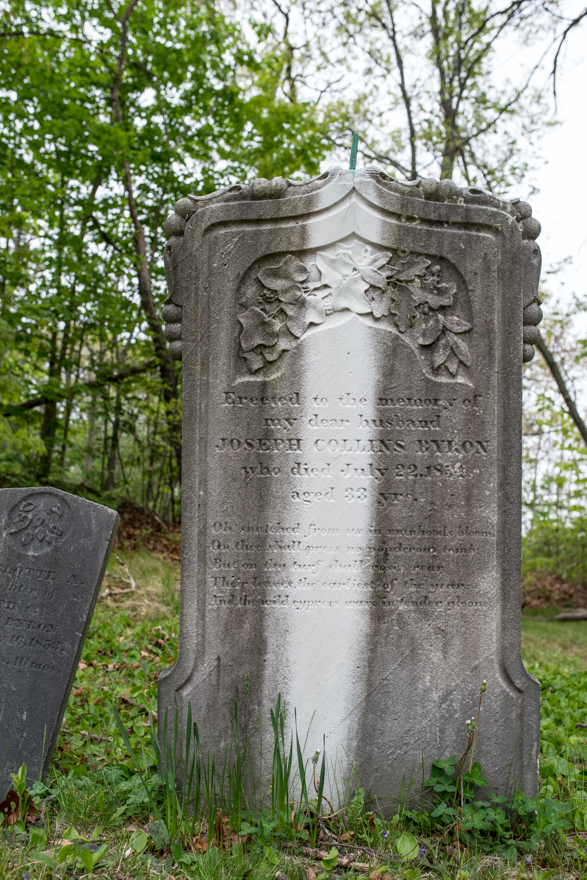 marble gravestone with copper spike retarding growth of lichen