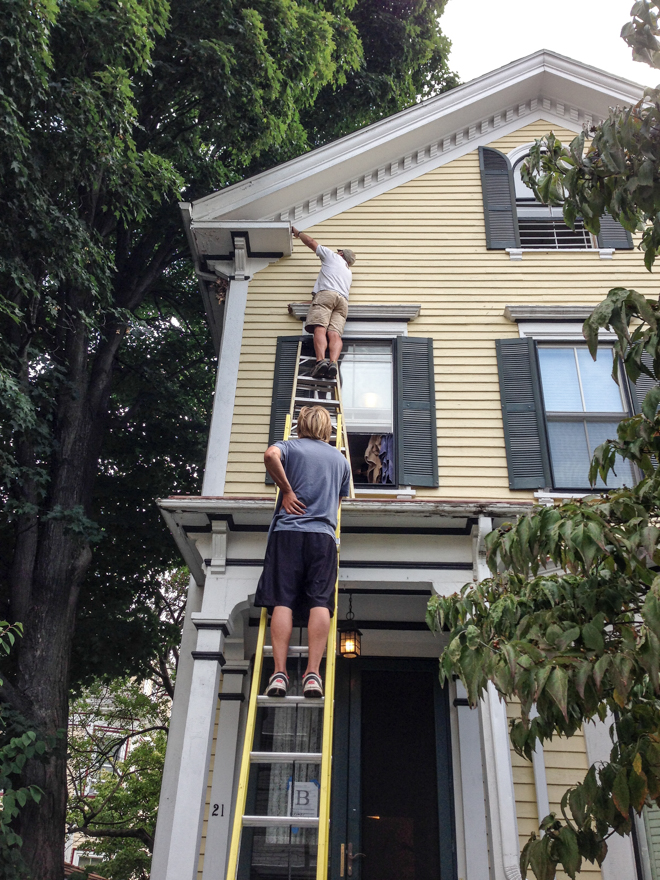 Carpenters rescuing cat from rooflet